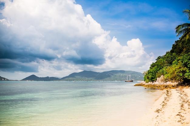 Tropikalna plaża z palmą i żaglowiec w odległości Premium Zdjęcia