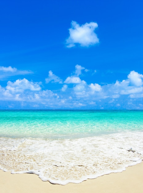 Tropikalna Plaża Premium Zdjęcia
