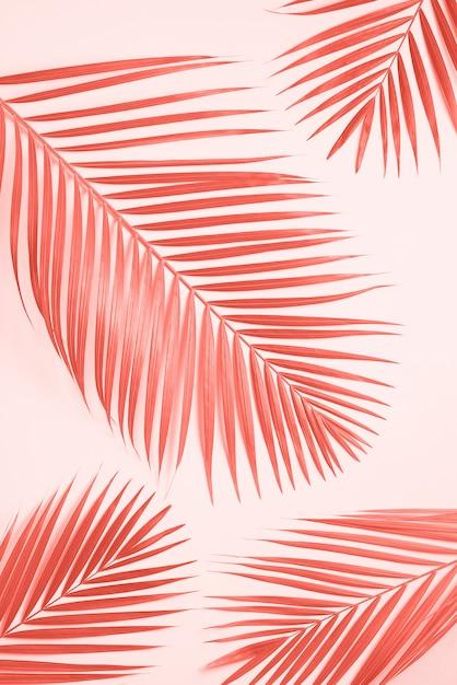 Tropikalne liście palmowe na pastelowym żółtym tle. Premium Zdjęcia