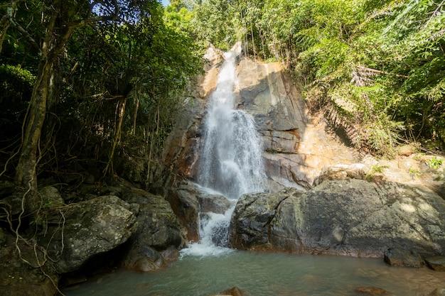 Tropikalny Wodospad W Dżungli Premium Zdjęcia