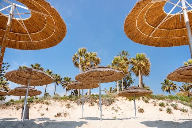 Trzcinowe Parasole, Parasole Przeciw Błękitne Niebo Na Plaży. Bambusowe Parasole, Słomiane Parasole Na Białym Piaszczystym Tropikalnym Wybrzeżu. Wybrzeże Tropikalnej Plaży, Letnie Wakacje. Premium Zdjęcia