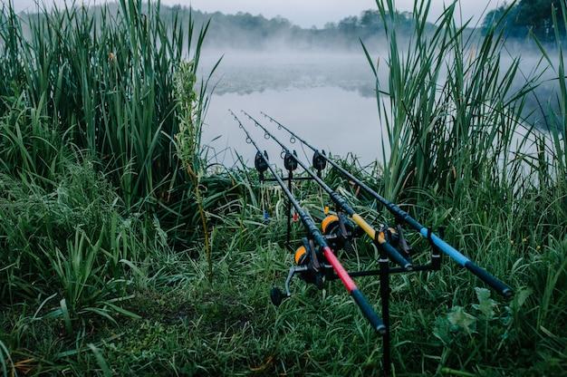 Trzy Karpiowe Wędki W Wędkę Na Powierzchni Jeziora Premium Zdjęcia