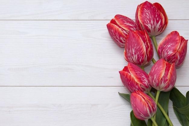 Tulipany kwiatowe. bukiet pięć żółtych czerwonych pasiastych tulipanów na białej drewnianej podłoga. Premium Zdjęcia