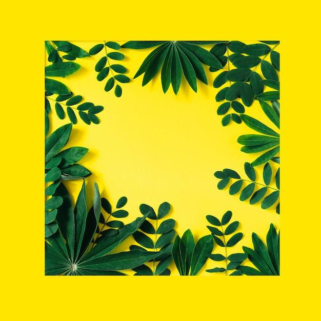 Twórcza Natura Rama Robić Tropikalni Liście I Kwiaty Na Kolorze żółtym Premium Zdjęcia