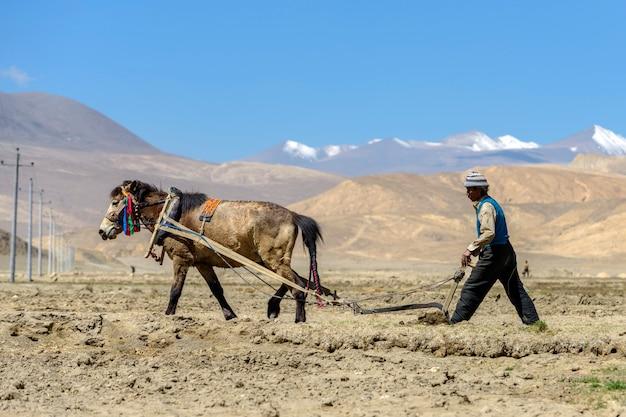 Tybetański Rolnik Pług Przez Konia Pociągowego Na Pola Uprawne W Tybecie Premium Zdjęcia