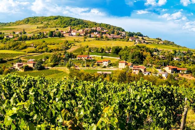Typowy Krajobraz Beaujolais We Francji Premium Zdjęcia
