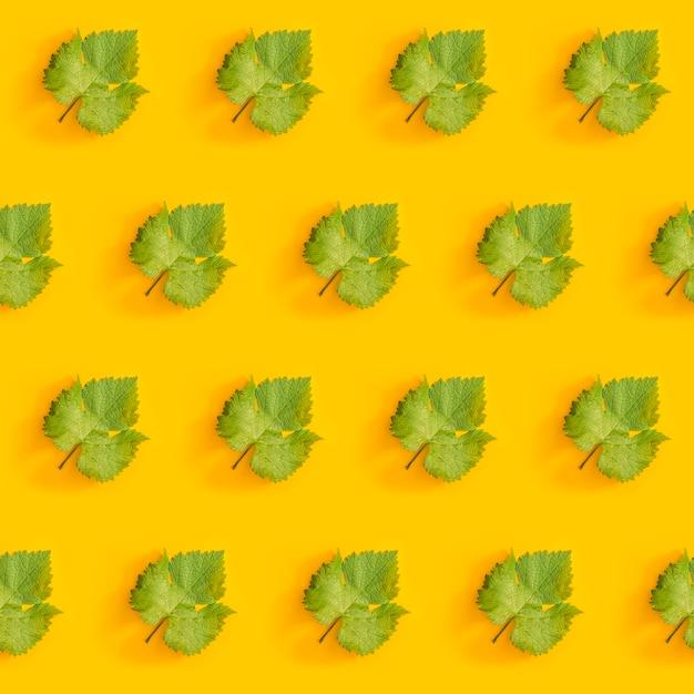Ukośny Wzór Z Zielonych Liści Winogron Premium Zdjęcia
