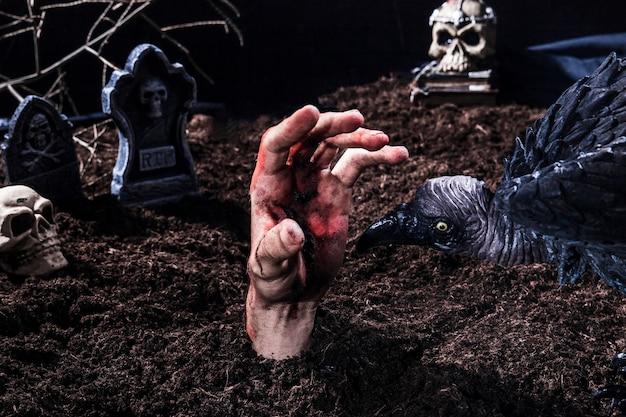 Upiorny Ptak Próbuje Ugryźć Rękę Zombie Na Cmentarzu Halloween Darmowe Zdjęcia