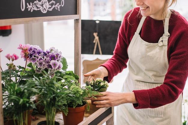 Upraw Kobiety Opiekujące Się Kwiatami Darmowe Zdjęcia