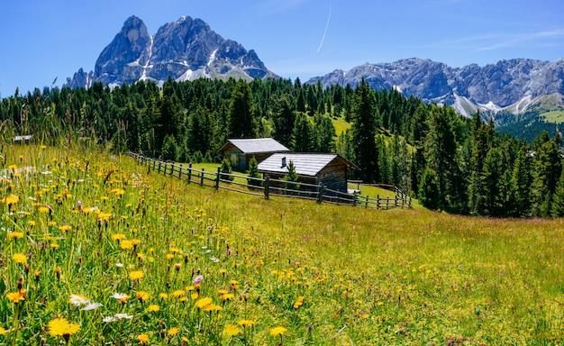 Uroczy dom w słoneczny letni dzień Premium Zdjęcia