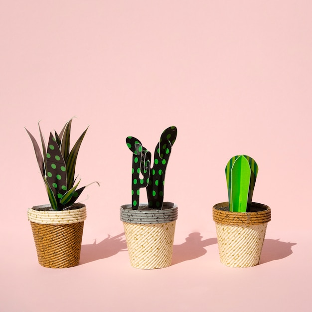 Uroczy Styl Wycinanych Z Papieru Sztucznych Kaktusów Darmowe Zdjęcia