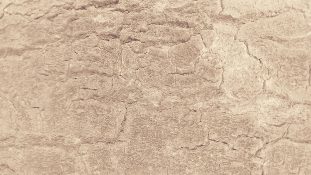 Uszkadzający Nawierzchniowej Tekstury Jasnobrązowy Tło Darmowe Zdjęcia