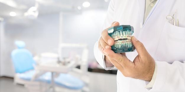 W ręku model ortodontyczny dentysty Premium Zdjęcia