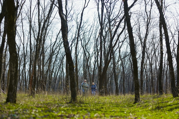 W Wielkim świecie Przyrody. Starsza Rodzina Para Mężczyzna I Kobieta W Strój Turystyczny Spaceru Na Zielonym Trawniku W Pobliżu Drzew W Słoneczny Dzień Darmowe Zdjęcia