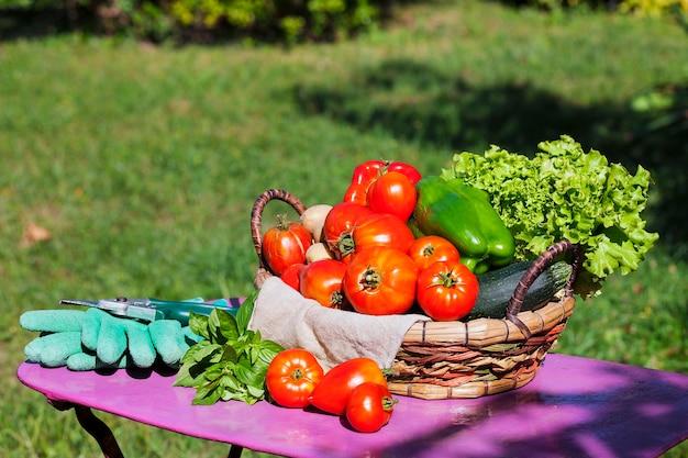 Warzywa W Koszu Pod Słońcem Darmowe Zdjęcia