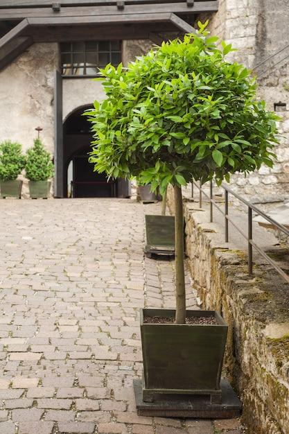 Wąska ulica w starym mieście austriackim Premium Zdjęcia