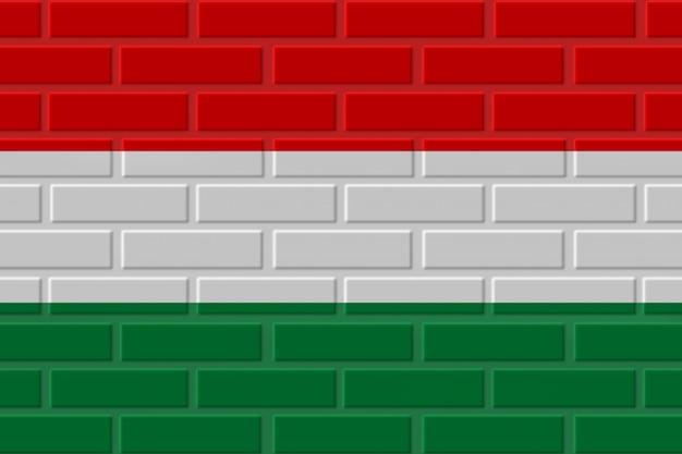 Węgry Ceglana Flaga Ilustracja Premium Zdjęcia