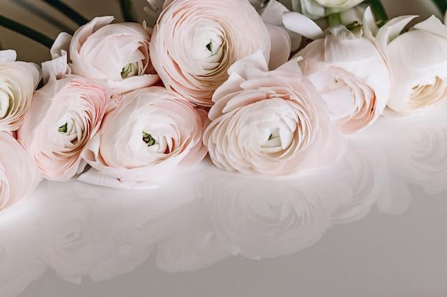 Wiązka jasnoróżowi ranunculus kwiaty na lekkim tle Premium Zdjęcia