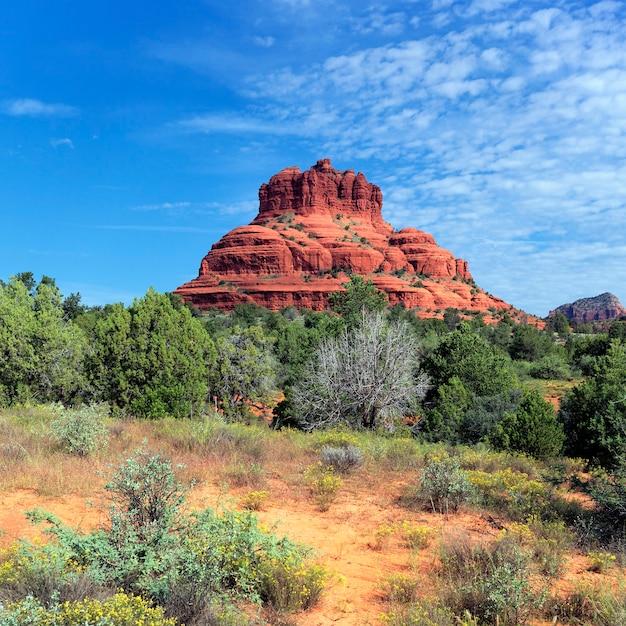 Widok Na Czerwoną Skałę Sedona W Stanie Arizona Premium Zdjęcia