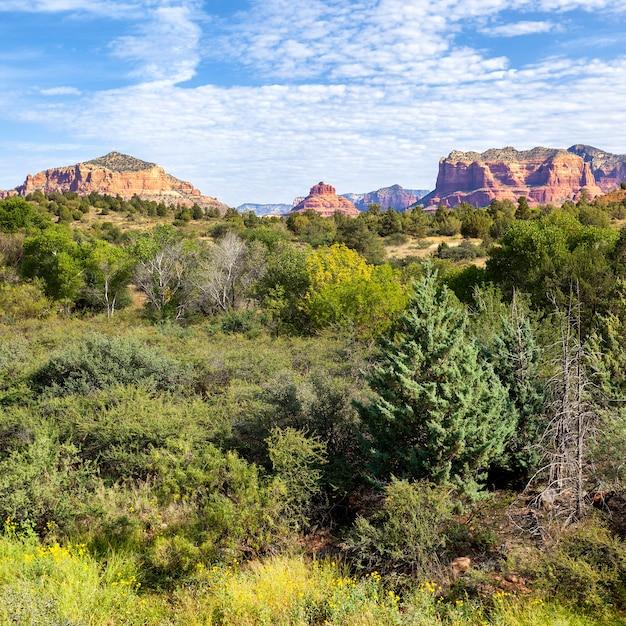 Widok Na Krajobraz Czerwonej Skały, Sedona, Arizona Premium Zdjęcia