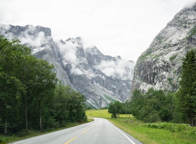 Widok Na Pustą, Utwardzoną Drogę Z Białymi Liniami. Górska Droga Przez Dolinę Z Drzewami I Zielonymi Trawnikami Premium Zdjęcia