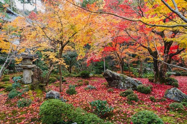 Widok z balkonu japan starej zen świątyni z pięknym japończyka ogródem w jesieni Premium Zdjęcia