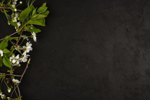 Widok Z Góry Białe Kwiaty Na Ciemnej Podłodze Darmowe Zdjęcia