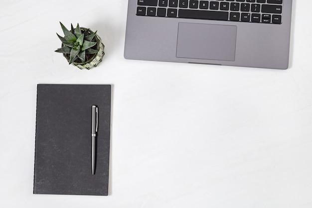 Widok Z Góry Biały Stół Roboczy Z Laptopa, Nabiał, Długopis I Soczyste Rośliny Premium Zdjęcia