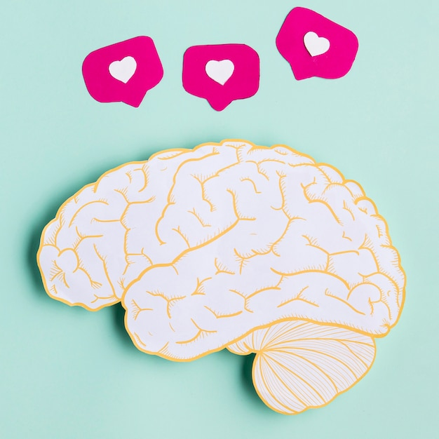 Widok Z Góry Kształt Mózgu Papieru Darmowe Zdjęcia