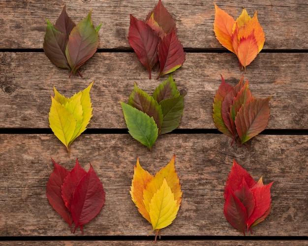 Widok Z Góry Na Kolorowe Jesienne Liście Na Powierzchni Drewnianych Darmowe Zdjęcia