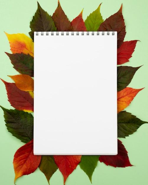 Widok Z Góry Notebooka Z Liści Jesienią Darmowe Zdjęcia
