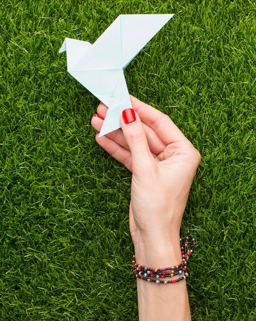Widok Z Góry Ręki Trzymającej Papierową Gołąbkę Na Trawie Darmowe Zdjęcia