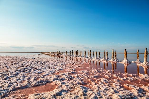 Widok z lotu ptaka różowy jezioro i piaskowata plaża Premium Zdjęcia