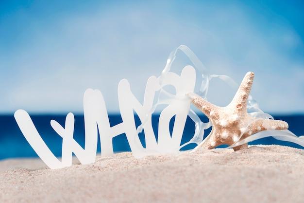 Widok Z Przodu Rozgwiazdy Z Plastiku Na Plaży Darmowe Zdjęcia