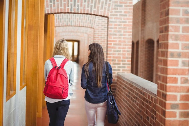 Widok Z Tyłu Studentów W Korytarzu Na Uniwersytecie Premium Zdjęcia