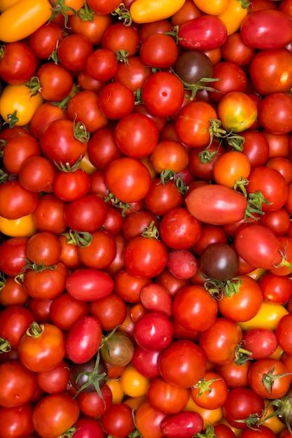 Widzimy Tacę Z Zebranymi Pomidorami. Zdjęcie Może Służyć Jako Tło. Premium Zdjęcia