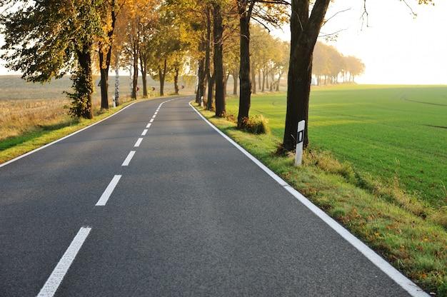 Wiejska Droga, Piękna Scena Premium Zdjęcia
