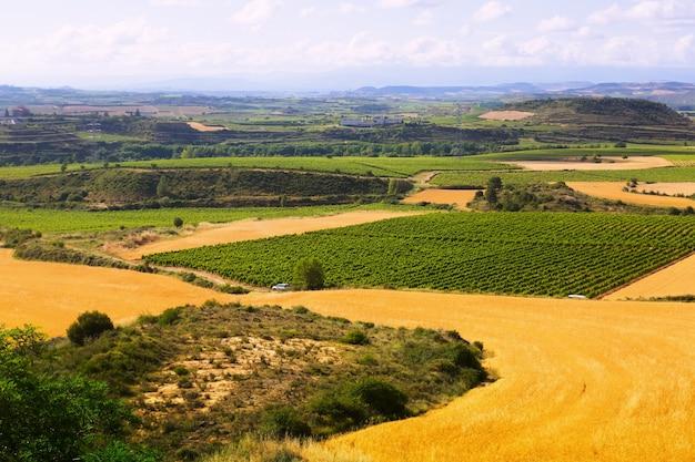Wiejski Krajobraz W Lecie. La Rioja Darmowe Zdjęcia