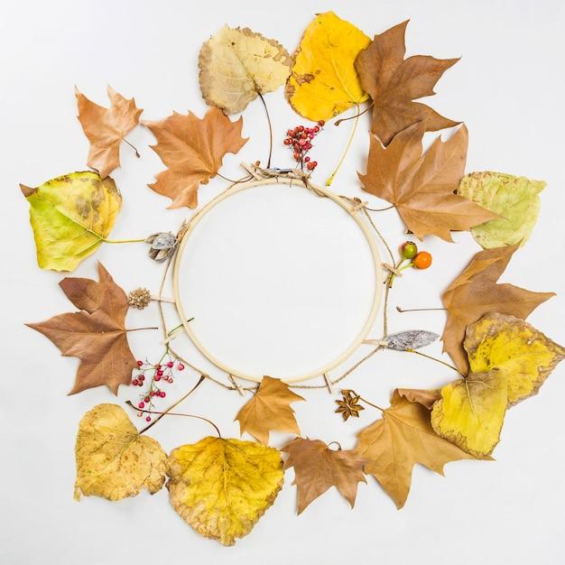 Wieniec Jesienny Darmowe Zdjęcia