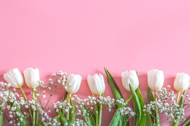 Wiosenna Kompozycja Kwiatowa Na Różowej ścianie Darmowe Zdjęcia
