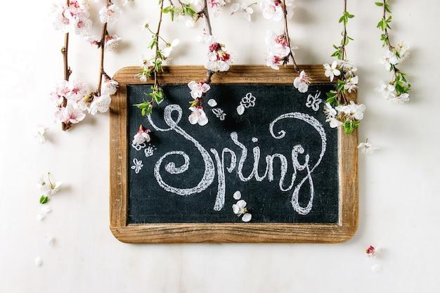 Wiosenne Kwiaty Premium Zdjęcia