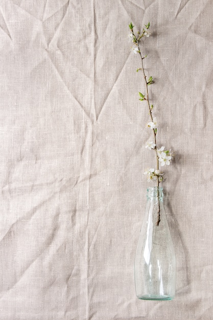 Wiosną Kwitnąca Gałąź Premium Zdjęcia