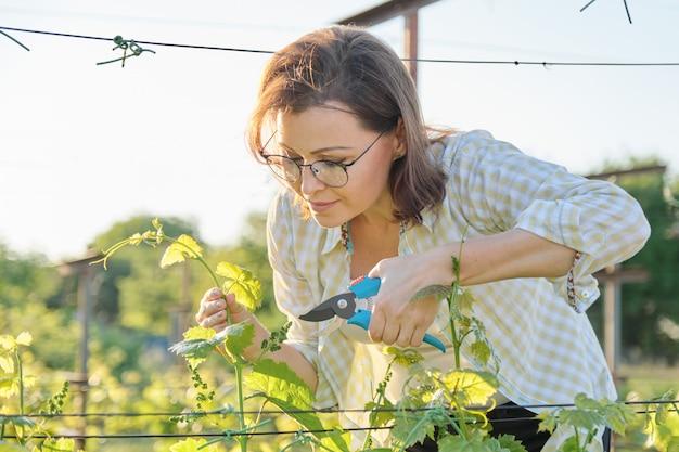 Wiosna Portret Dojrzała Kobieta Pracuje W Winnicy Premium Zdjęcia