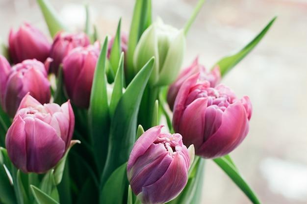 Wiosna Różowe Kwiaty Niewyraźne Streszczenie Tło Premium Zdjęcia