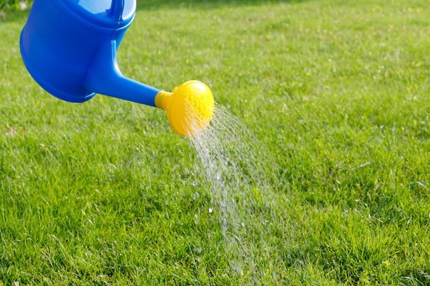 Woda Wylewa Się Z Niebieskiej Plastikowej Konewki Z żółtym Dyfuzorem Na Zielony Trawnik Premium Zdjęcia