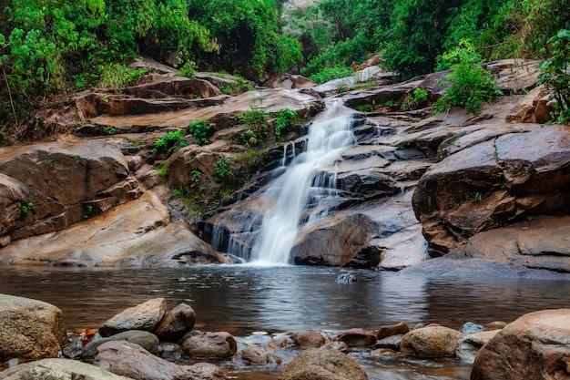 Wodny Spadek W Lesie Z Zieloną Drzewną Naturą Premium Zdjęcia