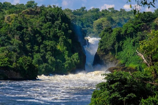 Wodospad Pośrodku Klifów Z Drzewami I Roślinami W Słoneczny Dzień Darmowe Zdjęcia