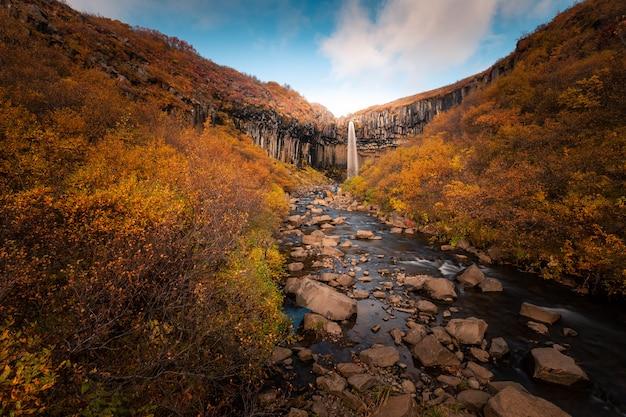 Wodospad Svartifoss W Parku Narodowym Skaftafell W Południowej Islandii. Premium Zdjęcia