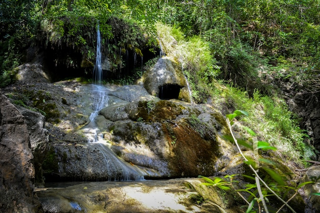 Wodospad Ukryty W Tropikalnej Dżungli Premium Zdjęcia
