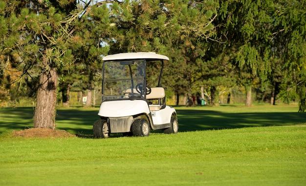 Wózki Golfowe Na Polu Golfowym Premium Zdjęcia